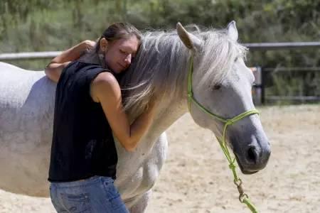 Pferdetherapie - Praxis Meininger-Schön - Bild-02
