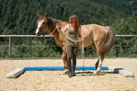 Pferdetherapie - Praxis Meininger-Schön - Bild-04