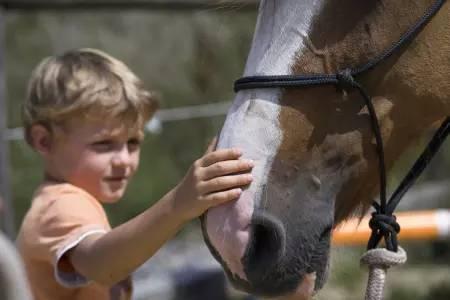 Pferdetherapie - Praxis Meininger-Schön - Bild-10