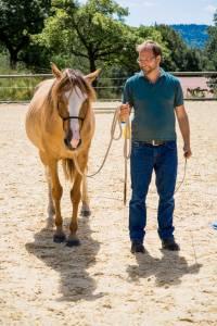 Pferdetherapie - Praxis Meininger-Schön - Bild-13